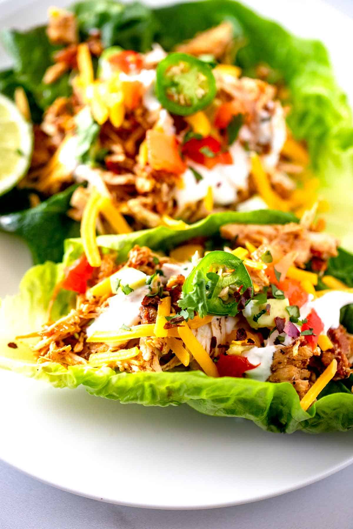Close up photo of Chicken Taco Lettuce Wraps on a white plate.
